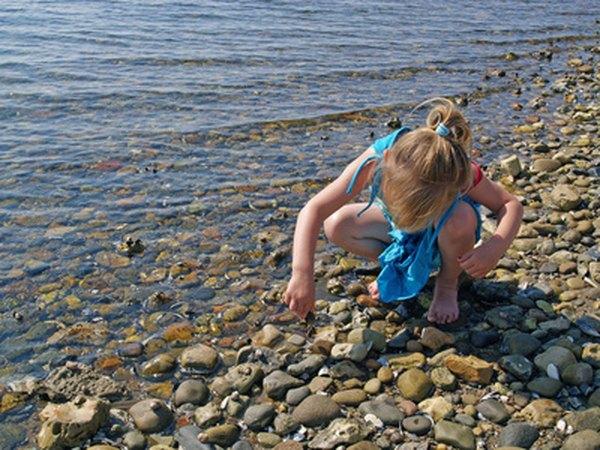Child collecting rocks along a shoreline.