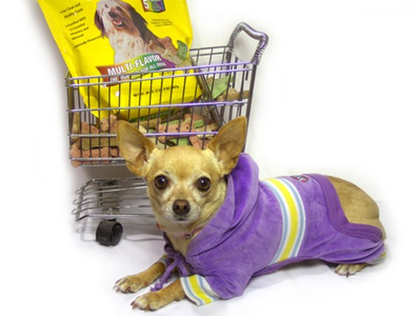Design your dog clothing to be fashionable and functional.
