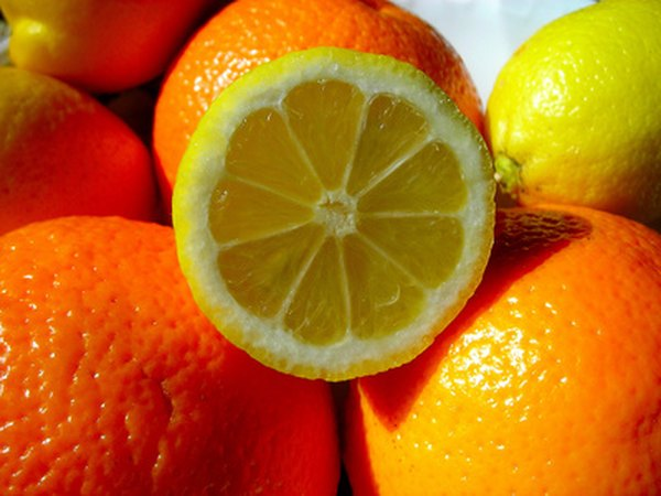 Cats Dislike The Smell Of Citrus Fruit
