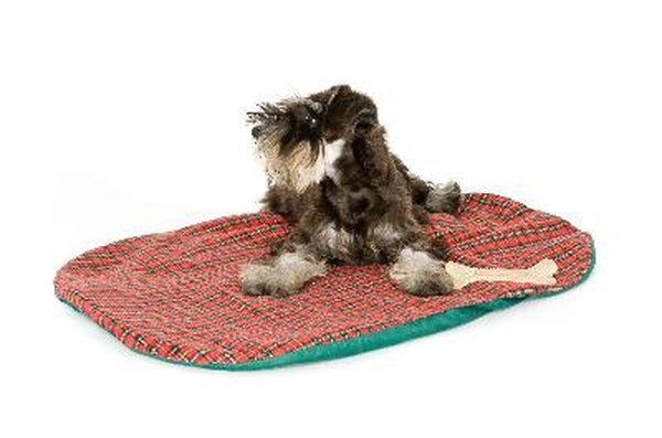 Make A Dog Bed To Fit Your S Personality And Home Decor