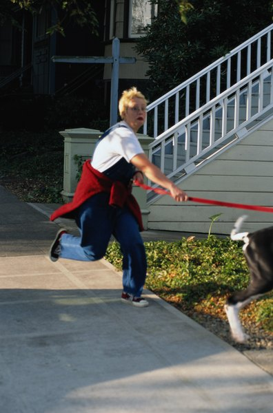 Let your dog pull something besides you on a walk.