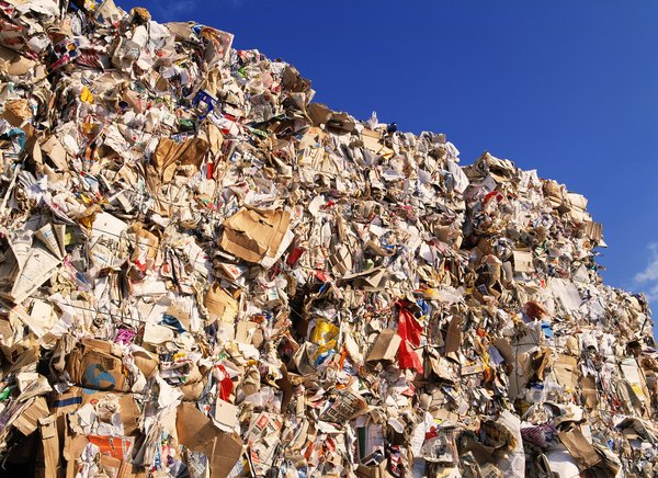 The average American tosses out more than four pounds of trash each day.