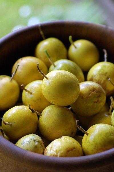 Las especies más conocidas de maracuyá son el amarillo y el morado.