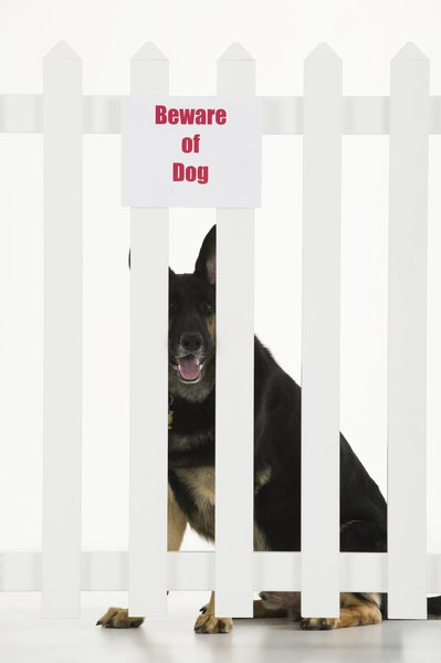 Fences that let your dog see outside can enhance his aggression.