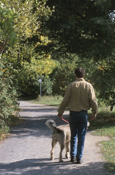 Picking up after your dog keeps the parks clean while reducing infection risk.