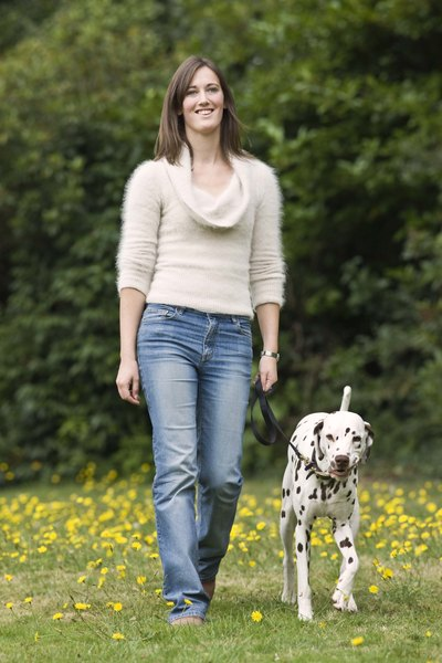 Fear or aggression toward other dogs can make walks stressful.