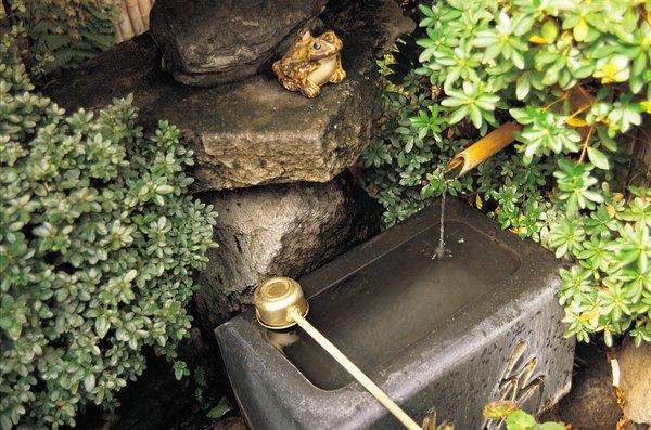 Instala una fuente o bebedero en el jardín.