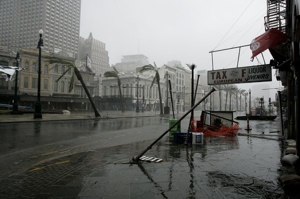 Listing palm trees and upended light poles are left in the wake of Hurricane Katrina August 29, 2005 on Canal Street in New Orleans, Louisiana.