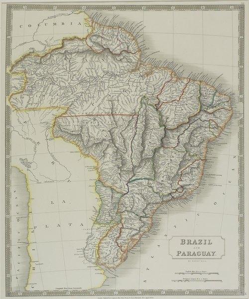 Os números da Floresta Amazônica impressionam