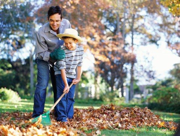 Colchón de hojas secas para los visitantes.