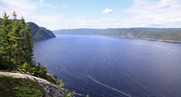 Conheça Quebec a bordo de um caiaque no mar