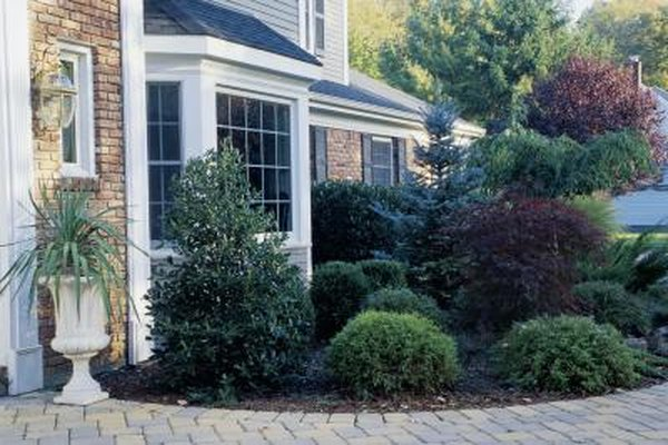 How to Landscape Around a House With Plants & Shrubs | Home Guides House Maintenance Plants Html on house lighting, house insurance, tree maintenance, house demolition, house real estate, grass maintenance, house plumbing, house palm tree identification, house design, house plants that clean the air, house plants and their names, house plants for fall,