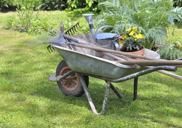 A wheelbarrow filled with gardening tools