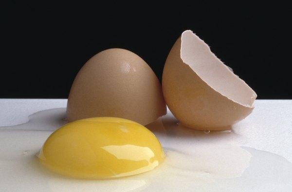 O ovo é muito bom para a saúde. Sua clara ajuda a limpar a garganta e melhora o raciocínio