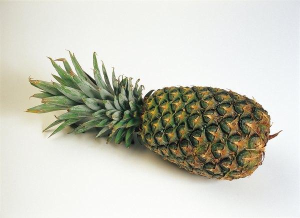 La piña es un fruto tropical cuyo uso en la cocina internacional se ha multiplicado.