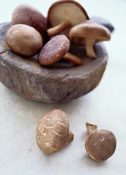 Black Mushroom Health Benefits | Live Well - Jillian Michaels