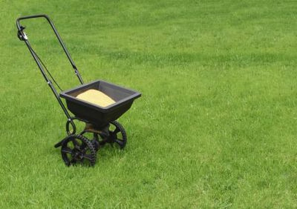 Can I Spread Salt With A Lawn Seeder Home Guides SF Gate