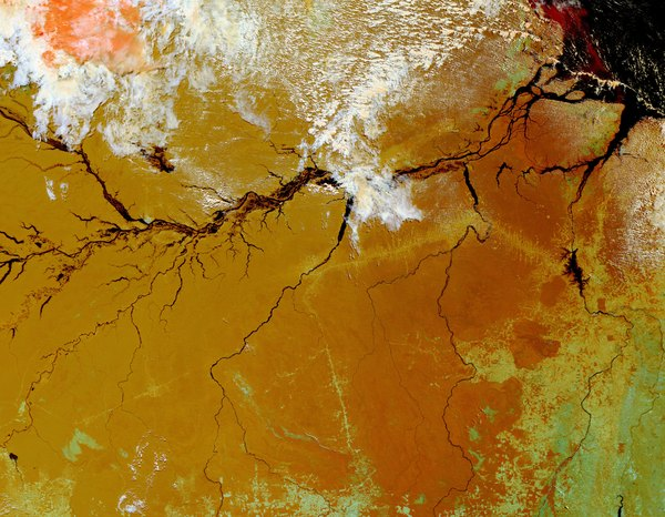 The Amazon Rainforest in Brazil captured by satellite imagery