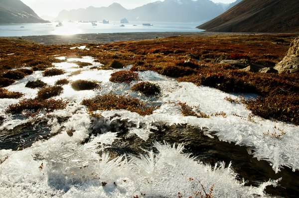 Permafrost at Scoresby Sound, Greenland