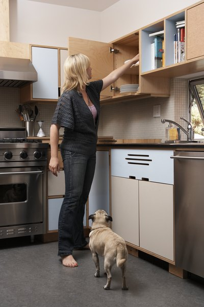 Reduce the objects available to your dog with elevated storage.