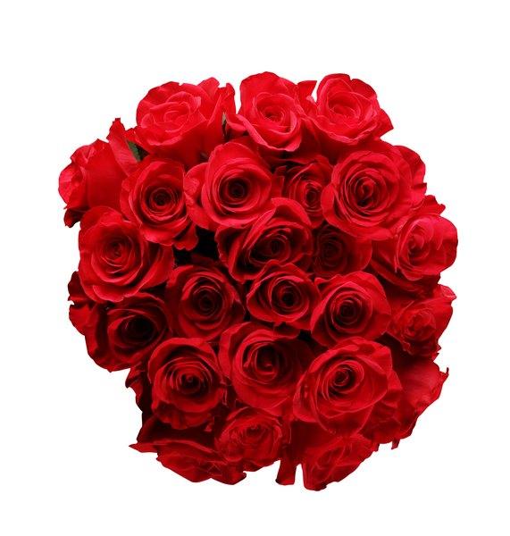 Regala flores para demostrar amor.