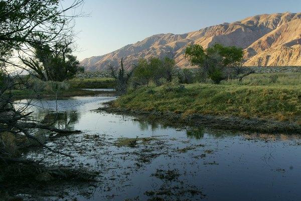 Owens River near Lone Pine, CA.