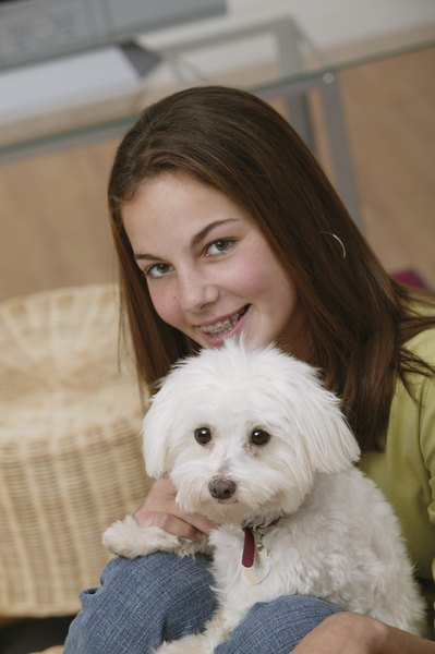 Allergy and asthma sufferers should consult their physician before choosing a dog breed.