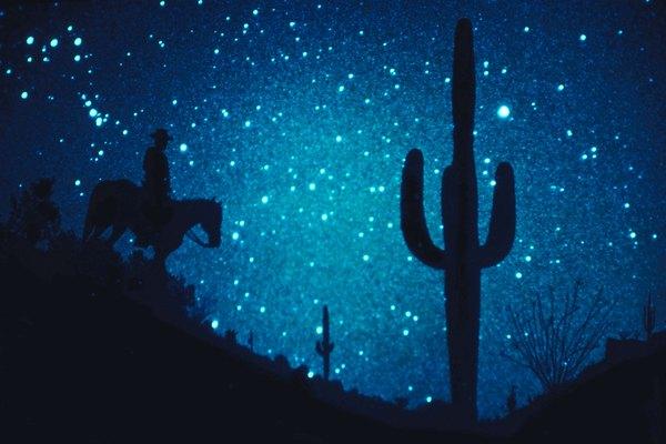 Desert temperatures can dip below freezing during the night.