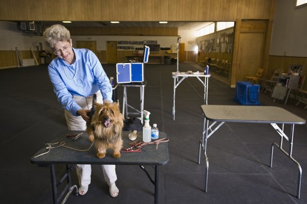 Using a table while grooming can make the task more comfortable for both dog and groomer.