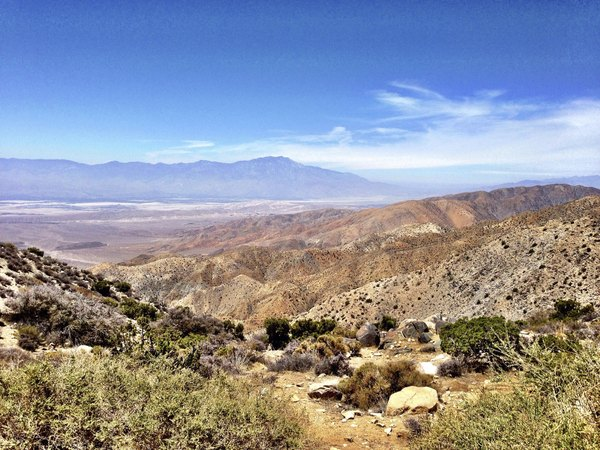 The San Andreas fault as seen from Joshua Tree