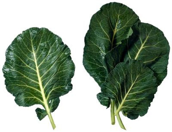 How Long Does It Take to Grow Collard Greens?