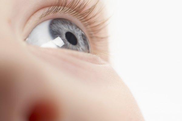 The lens of the eye has avascular tissue.