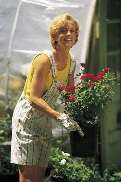 DIY: Balcony Greenhouse   Home Guides   SF Gate