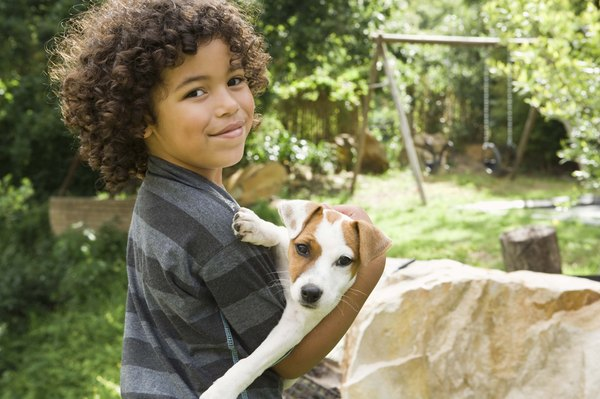 Puppies younger than four months are more open to meeting children and other new experiences.