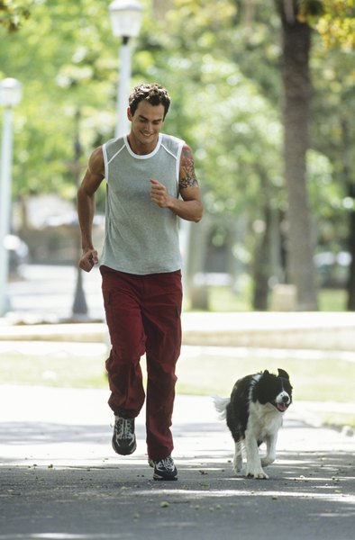 Jogging with your dog can keep both parties in shape.
