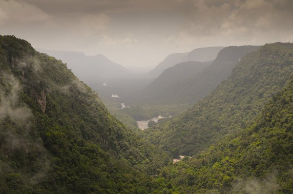 The Amazon valley.