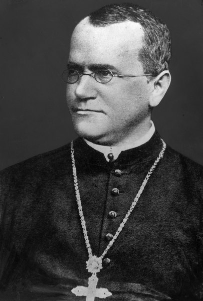 Gregor Mendel knew dominance when he saw it.