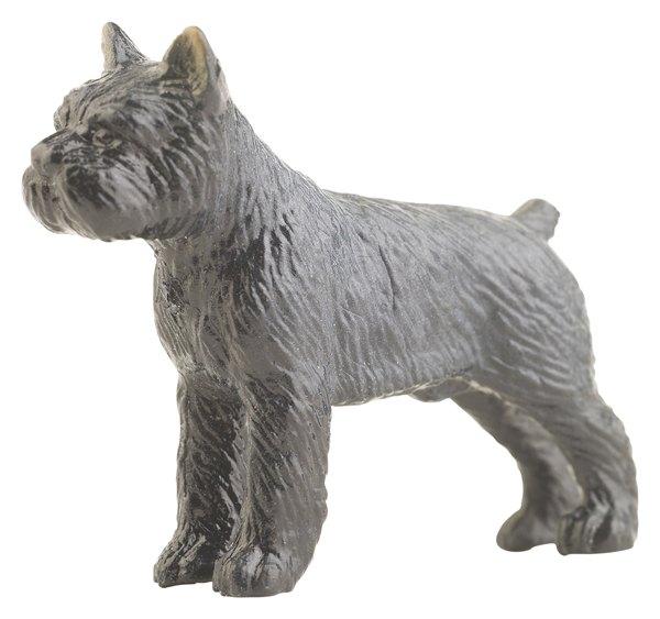 Proporciona a tu perro algunos juguetes como pelotas o cuerdas.