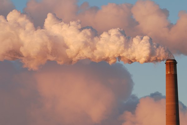 atmosphere and fossil fuel inputs The burning of fossil fuels by humans has caused a large increase in the  tions  for both total carbon and 13c for input and output of carbon to.
