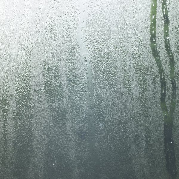 Condensing water vapor settles on a window.