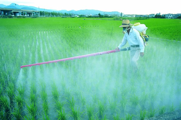 Pesticides and fertilizers that contain nitrates and phosphates are a source of chemicals that cause water pollution.