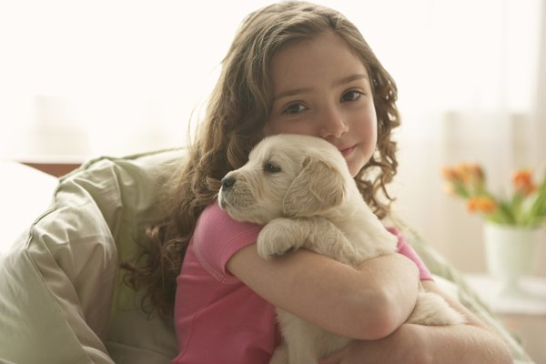 Instruct children that dogs need to remain calm during their recovery.