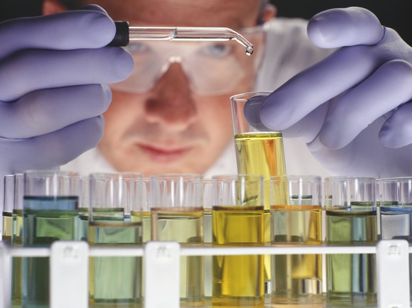 The Advantages of a Ph D  in Biotechnology | Education - Seattle PI