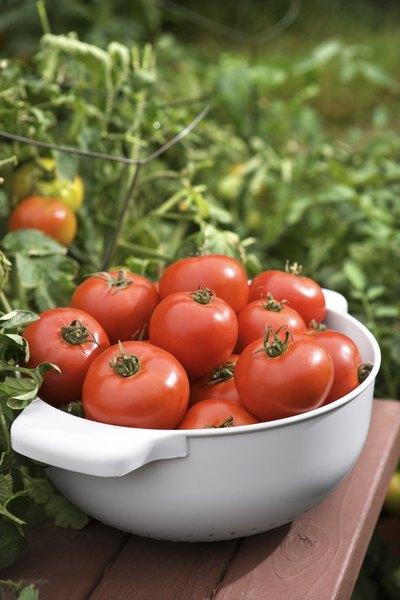Los tomates serán un gran aditamento para tu pincho.