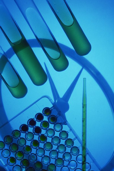 Biomedical engineering continues to thrive during times of economic uncertainty.