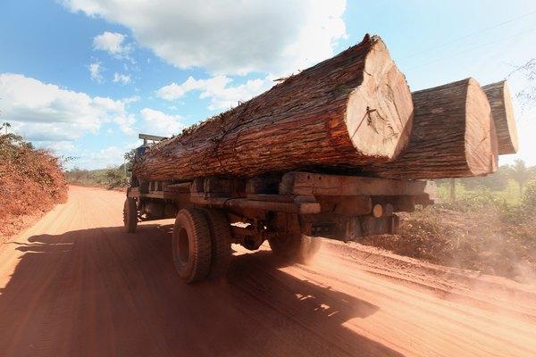 A atividade agrícola e extrativista da Amazônia é muito expressiva