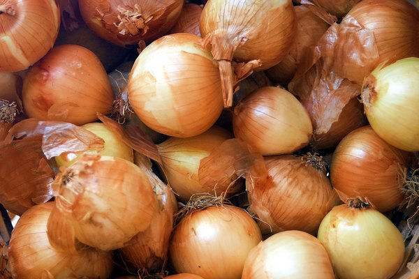 Onions can cause your pup's red blood cells to burst, leading to life-threatening complications.