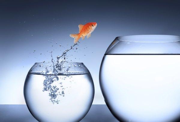 Se você detesta seu trabalho, comece a pensar em mudar radicalmente de vida