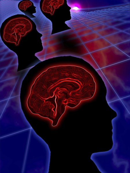 Left or right hemisphere of the brain learning a foreign language the left hemisphere of your brain aids your ability to learn a new language ccuart Images