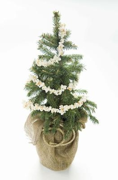 Cheap ways to decorate your house for the christmas season - How to decorate a house with no money ...